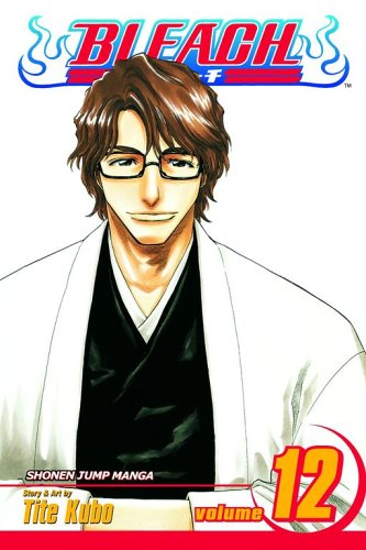 bleach-volume-12-flower-on-the-precipice