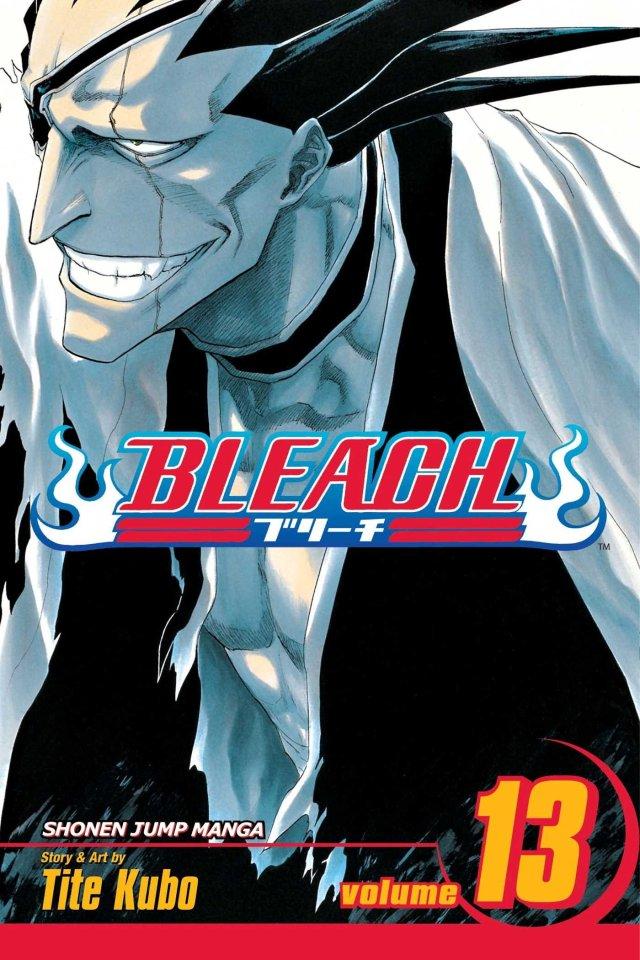 bleach-volume-13-the-undead