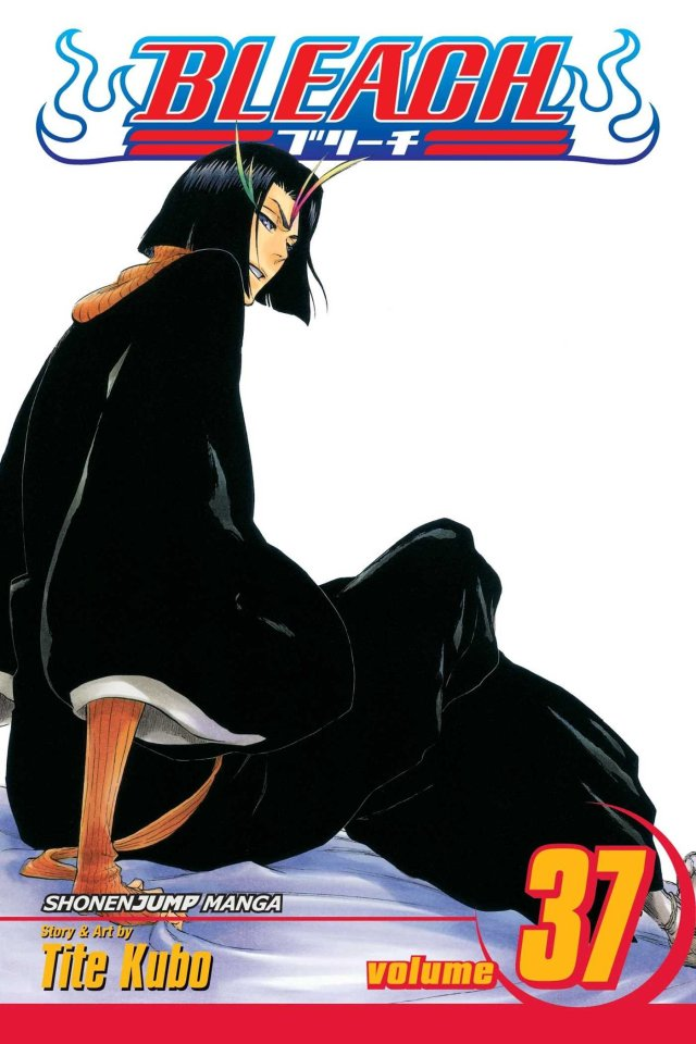 Bleach Volume 37 Beauty is So Solitary