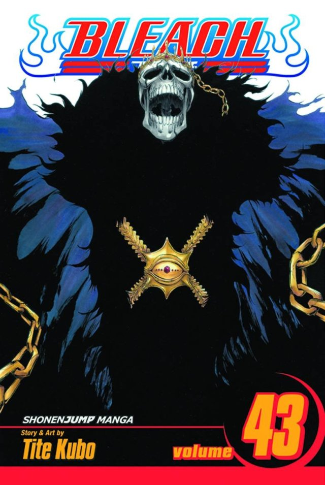 Bleach Volume 43 Kingdom of Hollows