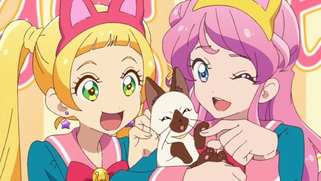 Honey Cat and Sugar